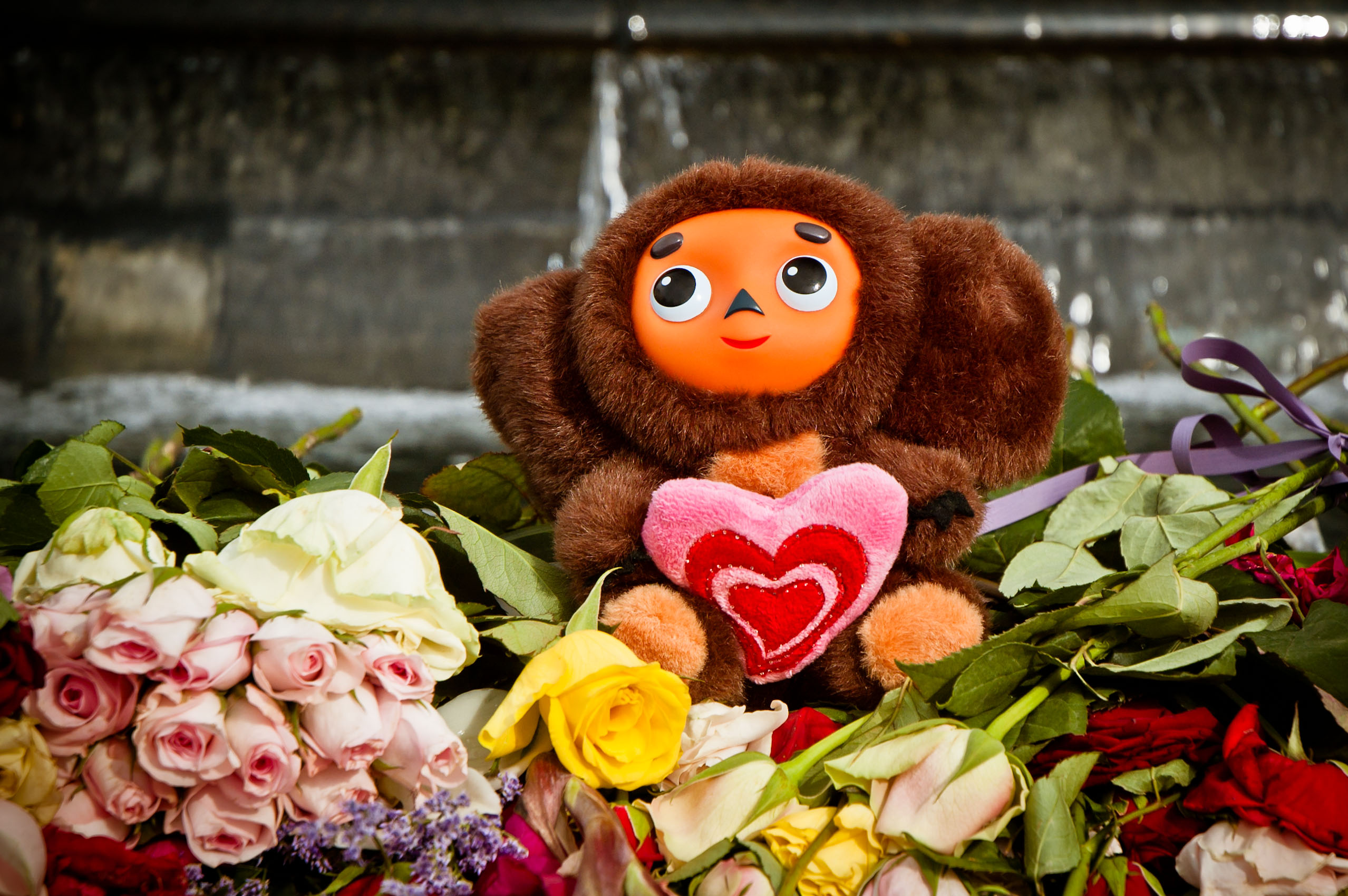 Cheburashka